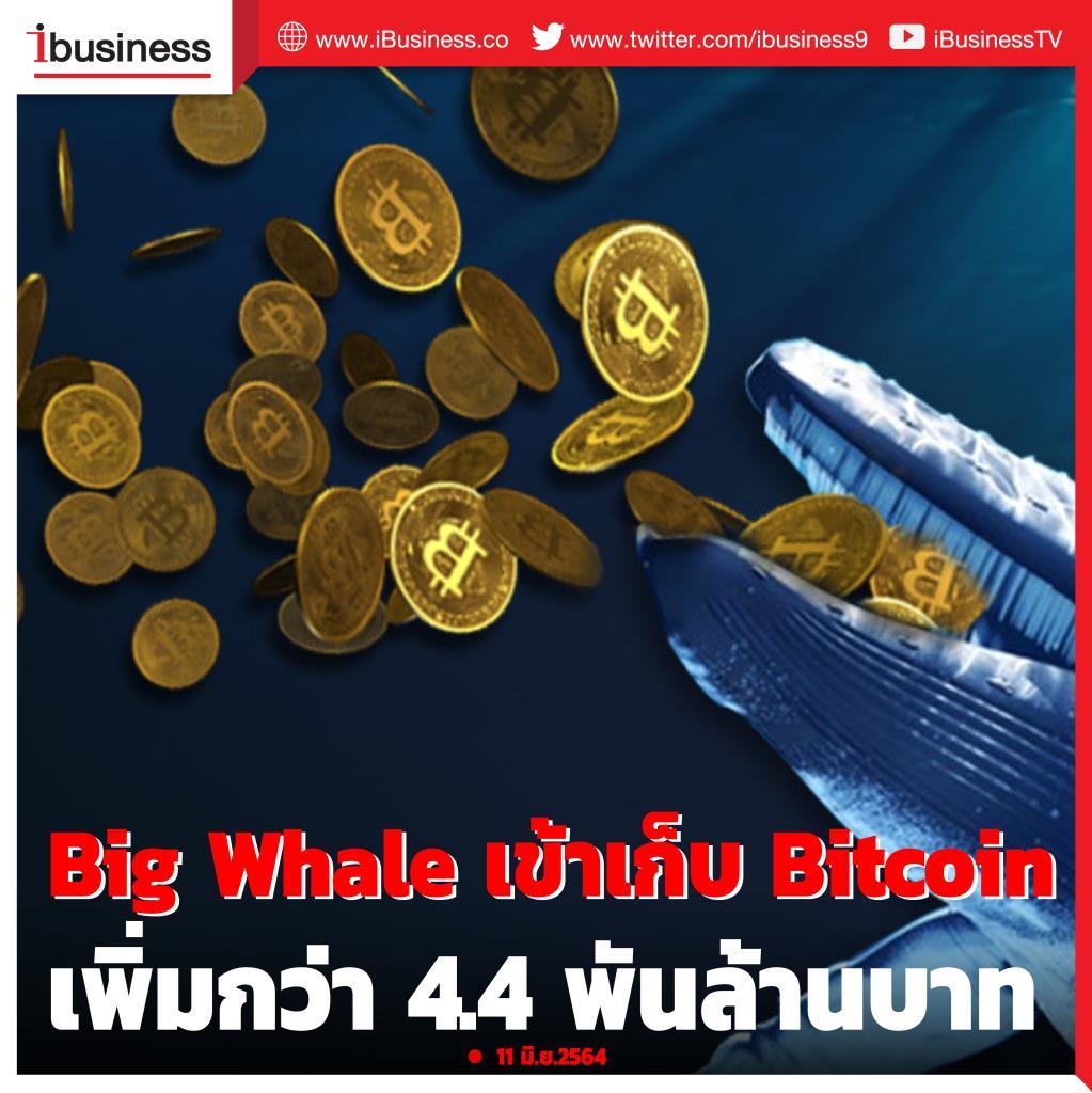 Blockchain เผย big whale เข้าเก็บ Bitcoin เพิ่มกว่า 4.4 พันล้านบาท