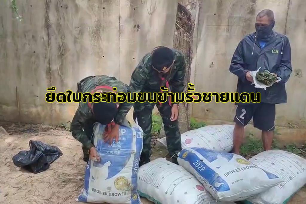 ทหารยึดใบกระท่อม 12 กระสอบ 360 กิโลฯ ขณะกองทัพมดขนข้ามรั้วชายแดนไทย-มาเลย์