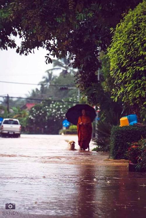 ทหารระดมกำลังเข้าช่วยประชาชนที่ประสบภัยน้ำท่วมในเมืองไซยะบูลี (ภาพจาก Lao Youth Radio FM 90.0 Mhz)