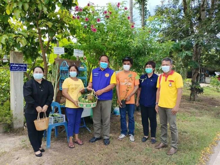 """พช.สุราษฎร์ธานี ยึดสโลแกน """"ครัวเรือนคือคลังอาหาร หมู่บ้านคือสถานที่แบ่งปัน"""" ตามโครงการปลูกพืชผักสวนครัว เพื่อสร้างความมั่นคงทางอาหาร"""