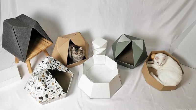 5 ไอเทมหมาแมวสุดคิวท์ เอาใจคนเลี้ยงสัตว์ในคอนโดฯ