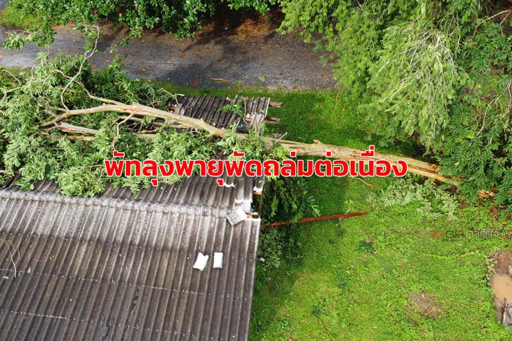 พายุพัดถล่ม จ.พัทลุงต่อเนื่องวันที่ 3 ทำต้นไม้ใหญ่ล้มทับอาคารกิจกรรมนักเรียนเสียหาย