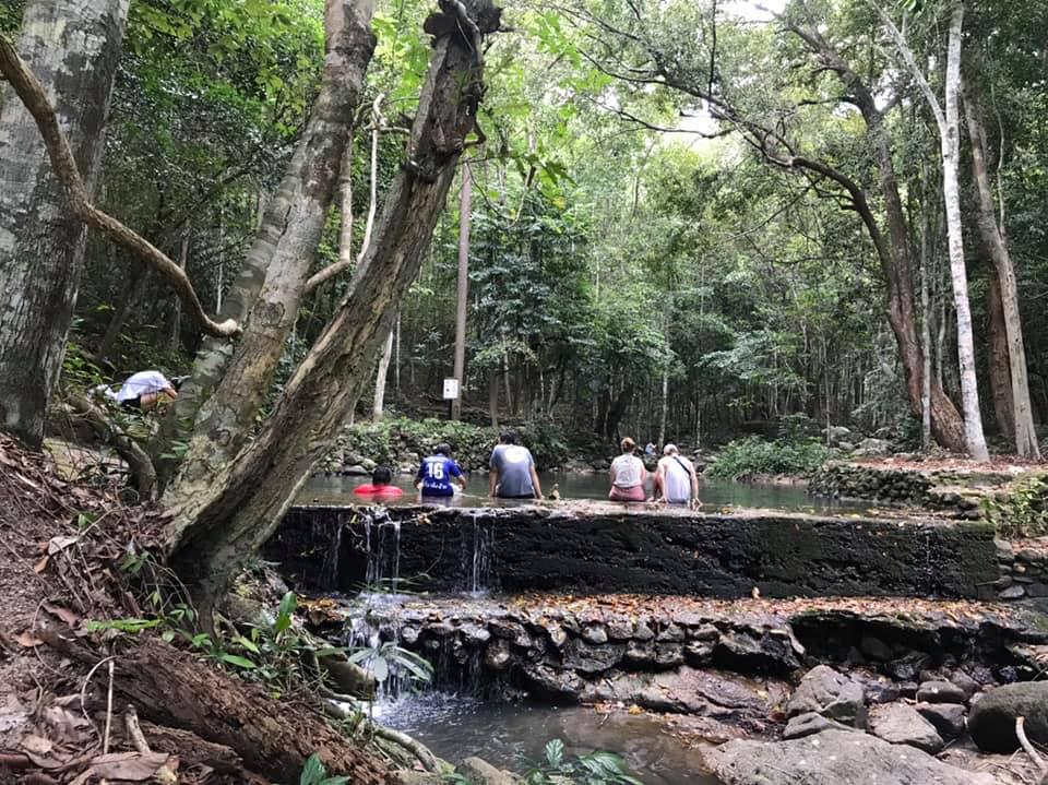 ธรรมชาติร่มรื่นที่ อุทยานแห่งชาติธารเสด็จ-เกาะพะงัน (ภาพ : อช.ธารเสด็จ-เกาะพะงัน)