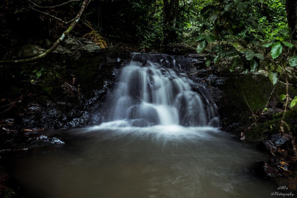 น้ำตกโตนอ่าวยน ภูเก็ต สวยงาม ร่มรื่น (ภาพจาก : เพจ น้ำตกโตนอ่าวยน)