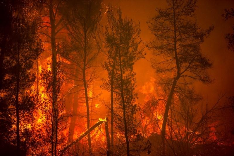 ไฟป่าบนเกาะเอเวีย ซึ่งเป็นเกาะใหญ่อันดับ 2 ของกรีซ เมื่อวันที่ 8 สิงหาคม 2021 ทั้งกรีซ และตุรกี ที่เป็นเพื่อนบ้านต้องต่อสู้กับไฟป่าที่ลุกไหม้รุนแรงเป็นเวลาเกือบ 2 สัปดาห์ ขณะที่อาณาบริเวณนี้เผชิญคลื่นความร้อนอย่างเลวร้ายที่สุดในรอบหลายสิบปี