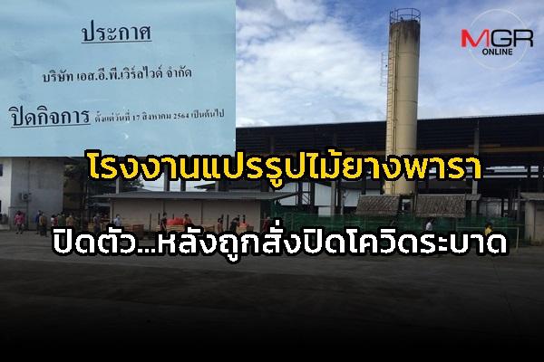 ยอมถอย! โรงงานแปรรูปไม้ยางพารา ที่พังงา ประกาศปิดตัวถาวร หลังถูกสั่งปิดจากโควิดระบาด