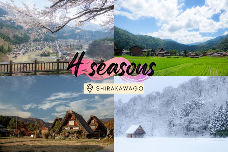 เที่ยว 4 ฤดูเมืองมรดกโลก 'ชิราคาวะโก' หมู่บ้านแห่งประวัติศาสตร์ที่สะท้อนปูมหลังญี่ปุ่น