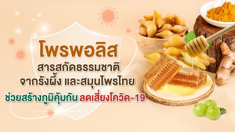 นักวิชาการชี้ โพรพอลิส สารสกัดธรรมชาติจากรังผึ้ง และสมุนไพรไทย ช่วยสร้างภูมิคุ้มกัน ลดเสี่ยงโควิด-19 อย่างมีนัยสำคัญ