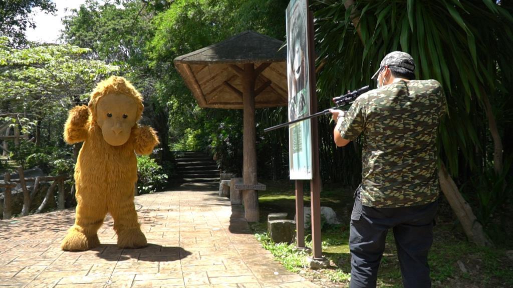เล่นใหญ่! สวนสัตว์เชียงใหม่ซ้อมแผนรับมือสัตว์หลุด จัดมาสคอตลิงยักษ์ให้ จนท.ไล่ตะครุบ