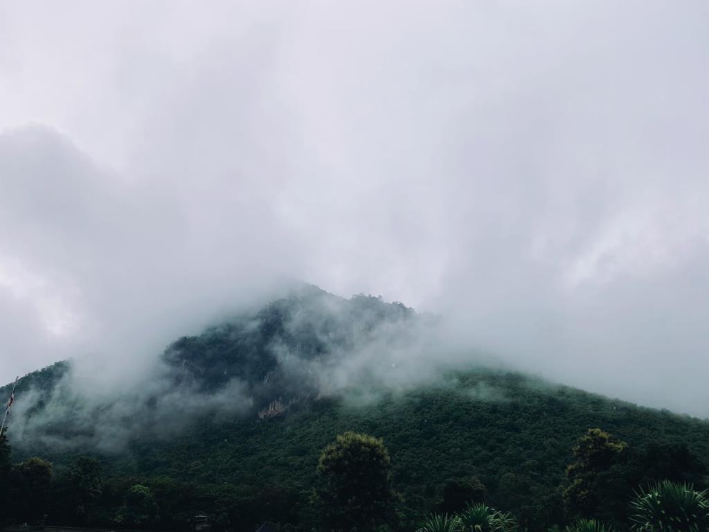 อลังการม่านหมอก (ภาพจาก อช.ภูผาม่าน)