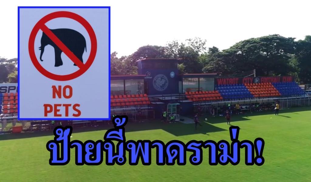 ป้ายห้ามสัตว์เลี้ยงทีมไทยลีก 3 กลายเป็นดราม่าเฉยเลย?
