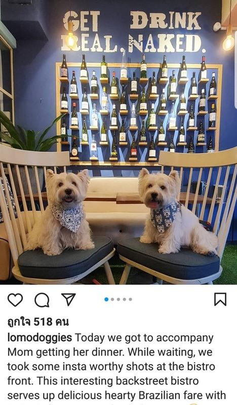 ซัสช่าและไปป์เปอร์ช่วยมามี้ส่งเสริมธุรกิจ SMEs สิงคโปร์ พร้อมเล่ากิจกรรมในค่ำคืนสบายๆ ที่ทำด้วยกันทั้งครอบครัว ให้แฟนคลับอินสตาแกรม Lomodoggies อ่านเพลินๆ ในภาพนี้ สองน้อนถ่ายรูปที่หน้าร้านอาหารบราซิลเลียนซึ่งมีเจ้าของเป็นชาวสิงคโปร์ โดยให้เห็นภาพหน้าร้านแสนสวยแต่ไม่ได้ระบุชื่อร้าน พร้อมติดแฮชแท็กให้ช่วยกันส่งเสริมร้านของคนสิงคโปร์ #supportlocalsg ซัสช่าเล่าว่าไปเป็นเพื่อนมามี้ทานอาหารเย็น ขณะที่รอ ก็ชวนกันบันทึกภาพของร้าน ซึ่งเป็นร้านอาหารริมทางที่เสิร์ฟอาหารบราซิลเลียนอร่อยมาก  การนำเสนอเรื่องราวสิ่งละอันพันน้อยเยี่ยงนี้ เป็นเสน่ห์มัดใจแฟนคลับให้ผูกพันใกล้ชิดกันน้อนเซเลบ