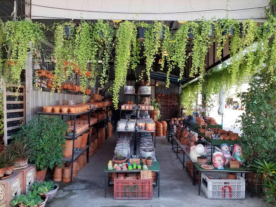 ตลาดต้นไม้เจ้าจอม (ภาพ : เพจตลาดต้นไม้เจ้าจอม)