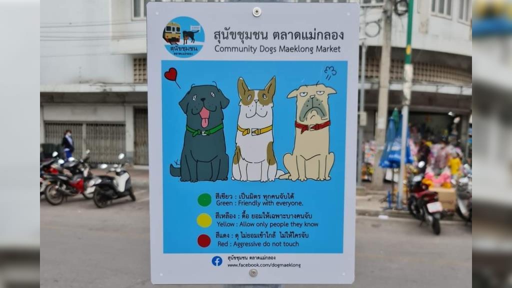 """ชาวเน็ตทั้งทึ่งทั้งแชร์ ป้าย """"สุนัขชุมชน ตลาดแม่กลอง"""" ตัวไหนดุ-ไม่ดุดูได้ที่ปลอกคอ"""