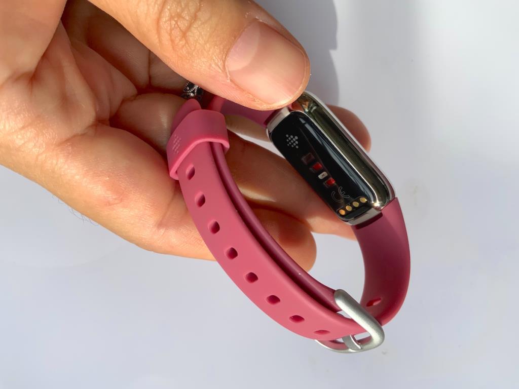 ด้านหลังของ Fitbit Luxe