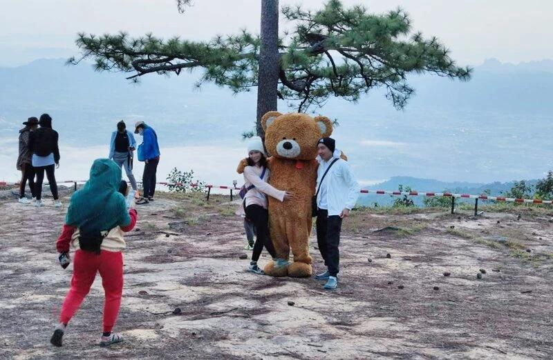 หนุ่มป่วยเป็นมะเร็งระยะสุดท้ายขอพรพระพุทธเมตตาแล้วหาย แต่งชุดหมีสร้างสีสันการท่องเที่ยว (ภาพ : อินเตอร์เน็ต)