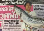 จดหมายเหตุ: กรณีปลาชะโดล้นเขื่อน 55