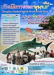 """ชมฉลามวาฬยักษ์ สัมผัสธรรมชาติท้องทะเลงาม ในงาน """"เปิดโลกทะเลชุมพร"""""""