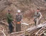 เผยผืนป่าเมืองเลยถูกชาวบ้าน-นายทุนบุกรุกหนัก เหลือแค่34 %