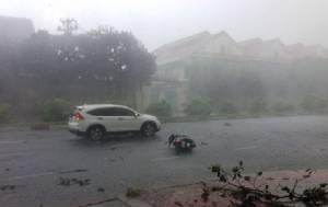 เกิดพายุลมแรงซัดเข้าใจกลางนครโฮจิมินห์ ต้นไม้ใหญ่อายุ 100 ปี หักโค่นระนาว