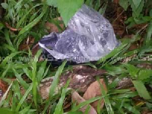 ชาวบ้านผงะ! พบศพ ด.ต.สภ.ป่าพะยอมนอนตายข้างถนน คาดถูกฆ่าชิงทรัพย์