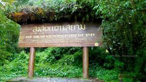 """สูงจริง สูงยิ่งกว่าใคร """"5 อันดับภูเขาสูงสุด"""" ในไทย"""