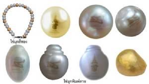งดงามไข่มุกเปลี่ยนเป็นสีทอง-พิมพ์ลายด้วยซินโครตรอน