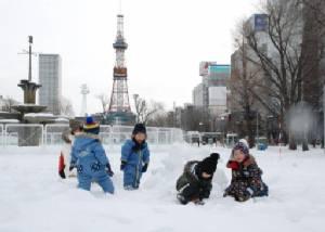 """พายุหิมะถล่ม """"ฮอกไกโด"""" ยกเลิกเที่ยวบินเกือบ 300 เที่ยว"""
