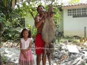 ตะลึง!! คนงานกระบี่เจอตะกวดยักษ์ออกจากป่ามาหาอาหารแต่ถูกทำร้ายจนตาย