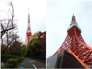 Alone in Tokyo (จบภาค ๑): กรุงเทพน่าจะมีป่าแบบนี้บ้างเนอะ!!