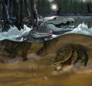Gnatusuchus crocodile