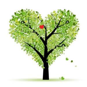 ธรรมะกับชีวิตประจำวัน : ต้นไม้ประธานาธิบดี ในสวนอักษรแห่งพุทธธรรม