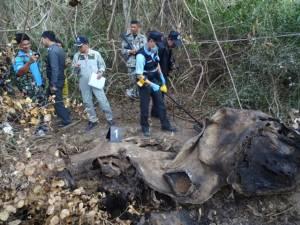 คาดช้างป่าละอูตายเองตามธรรมชาติ ตรวจไม่พบหัวกระสุน