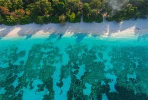"""ยุคเสื่อม """"เกาะตาชัย"""" ! แฉภาพมุมสูงน้ำเสีย-นักท่องเที่ยวนับพันทำใต้น้ำปะการังตายเรียบ"""