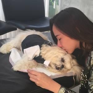 """เบรกหวานหัวทิ่ม """"อั้ม"""" น้ำตาแตก! หมาสุดรักป่วยหนักก่อนตาย"""