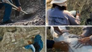 """""""ไดโนป้อง"""" ผู้เชี่ยวชาญไดโนเสาร์คอยาวหนึ่งเดียวในอาเซียน"""