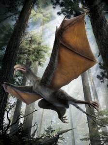 พบไดโนเสาร์ประหลาดตัวเท่านกพิราบ-ปีกคล้ายค้างคาว