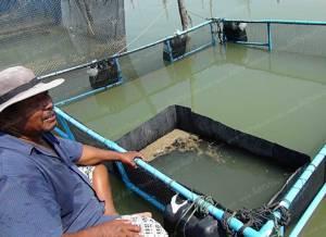 เกษตรกรสงขลาเลี้ยงปลาขี้ตัง สัตว์เศรษฐกิจตัวใหม่ สร้างรายได้งาม