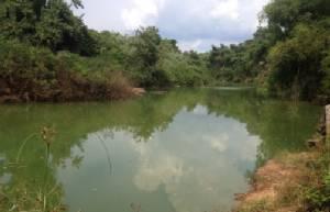 ชาวบ้านปราจีนร้องมีผู้ลักลอบทิ้งสารอันตรายลงแม่น้ำพระปรง