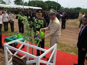 มทภ.3 นำทีมปลูกป่าล้านกล้ามหามงคล รับฝนแรกในพิษณุโลก