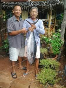 ชาวประมงชายฝั่งชุมพรตกได้ปลาทูน่ายักษ์ เผยจับได้แล้วกว่า 10 ตัว