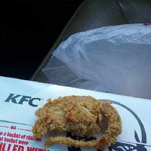 """อ้วกแทบพุ่ง! หนุ่ม รปภ.มะกันโวยไป KFC ซื้อ """"ไก่ทอด"""" ได้ """"หนูทอด"""" [ชมคลิป]"""