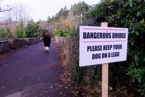 น่าขนลุก! สะพานผีสิง สุนัขโดดฆ่าตัวตายแล้วกว่า 600 ตัว