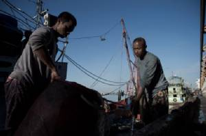 Thai crackdown on rogue fishing as EU ban fears loom