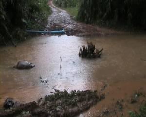 น้ำป่าไหลหลากพัดเส้นทางเข้า-ออกหมู่บ้านขาด สวนผลไม้เสียหาย