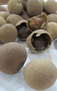 SME TV Show: 'อาร์.เค ฟู๊ด'ลำไยอบแห้งพันล้าน บุกแดนมังกร