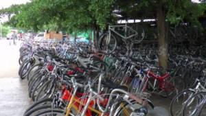 """บูมสนั่น! """"ปั่นเพื่อแม่"""" ฟีเวอร์ จักรยานมือสองชายแดนแม่สอดขายดิบขายดี"""