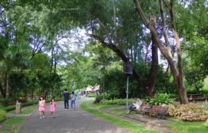 """พาแม่ชมดอกไม้งาม เดินเพลินๆ ที่  """"สวนสมเด็จพระนางเจ้าสิริกิติ์ฯ"""""""