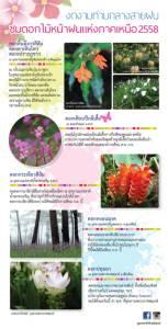 งดงามท่ามกลางสายฝน ชมดอกไม้หน้าฝนแห่งภาคเหนือ 2558