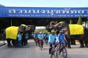 ช้างสวนนงนุชพัทยาร่วม Bike For MOM ปั่นเพื่อแม่